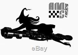 AMS Racing Stage I Necromancer Camshaft for 1997+ Chevrolet GM Gen III IV LS