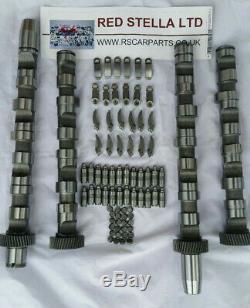 AUDI VW PASSAT 3B6 SKODA 2,5 Tdi V6 Camshaft Kit Set for Afb Ake Akn Aym Bfc