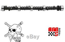 Lunati Voodoo 10120702 Hyd Camshaft for Chevrolet SBC 327 350 400 468/489 Lift