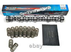 Texas Speed Stage 2 Turbo Camshaft Kit w Beehive Springs for Chevrolet 4.8 5.3